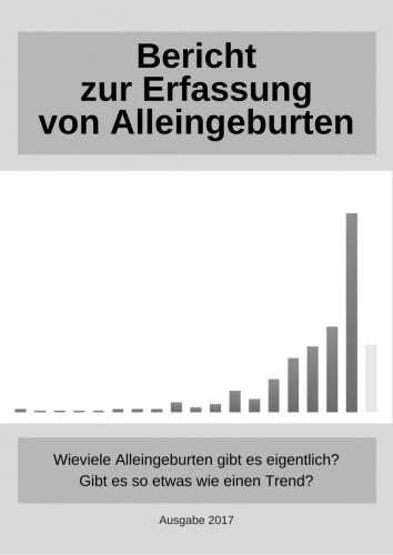 Bericht-zur-Erfassung-von-Alleingeburten