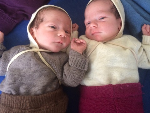 Zwillingsalleingeburt von L & J